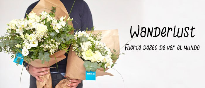 Wanderlust collection blog de flores y noticias frescas - The colvin co ...