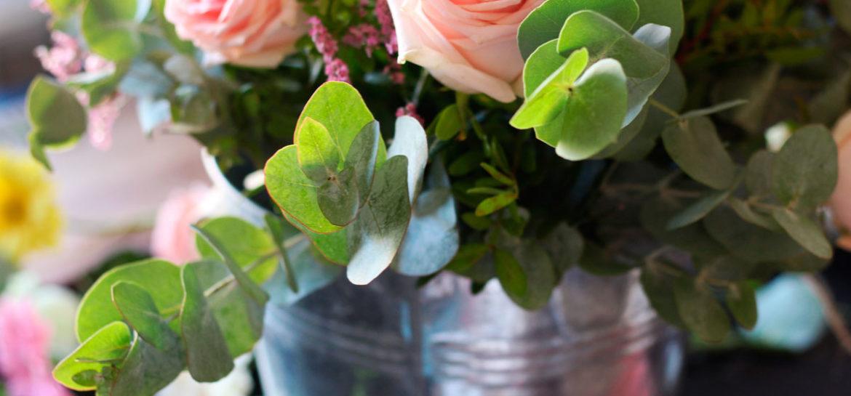 Flores Frescas. Rosas Palo Colvin