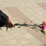 Flores contra las fronteras