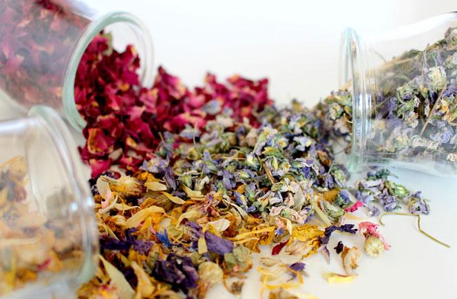 Consejos de c mo secar flores blog de flores y noticias - The colvin co ...