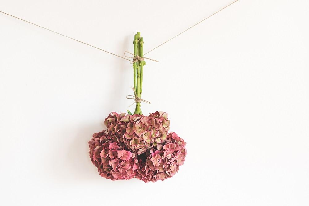 secar flores ramo colvin