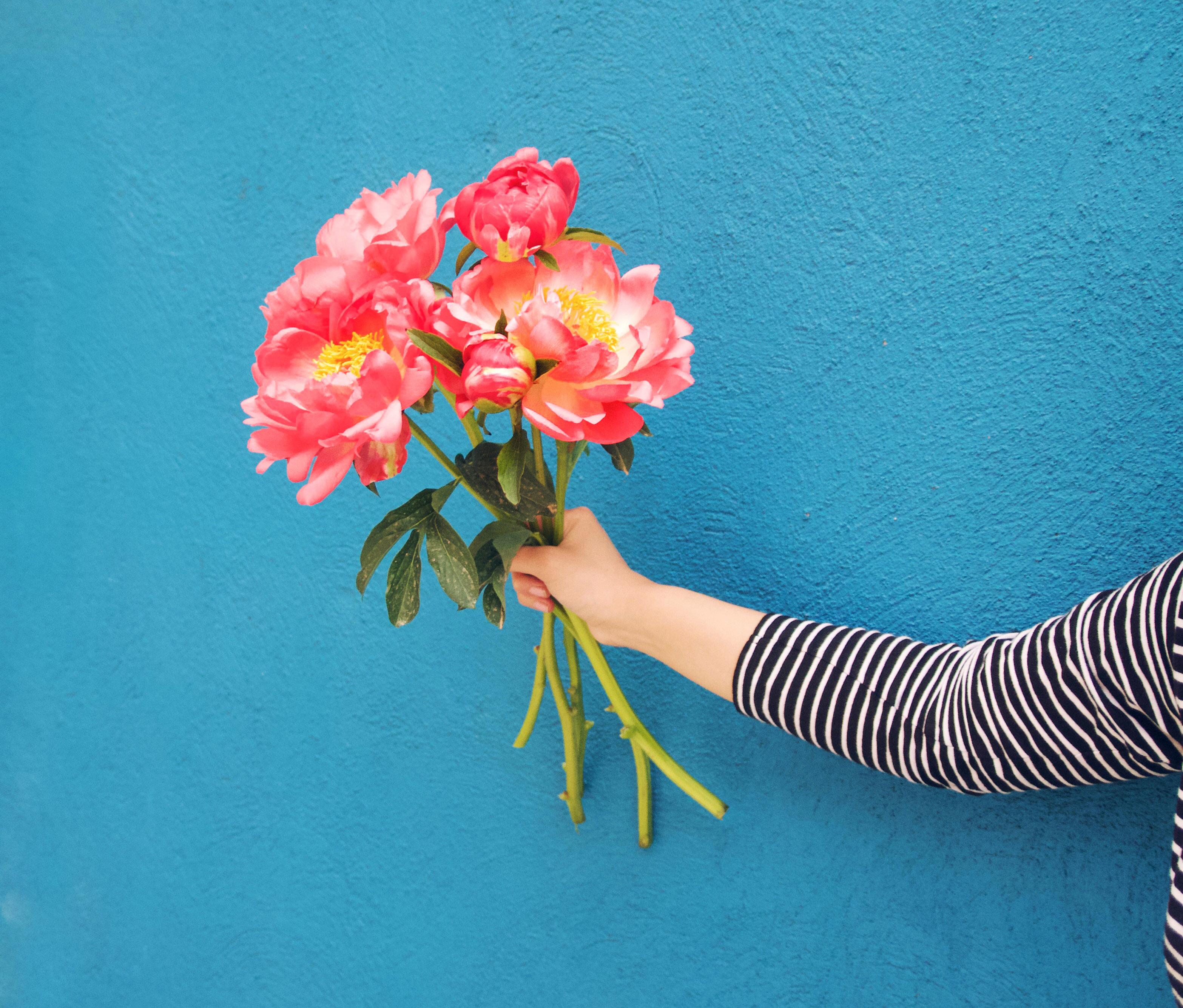 Ya es temporada de peon as blog de flores y noticias - The colvin co ...