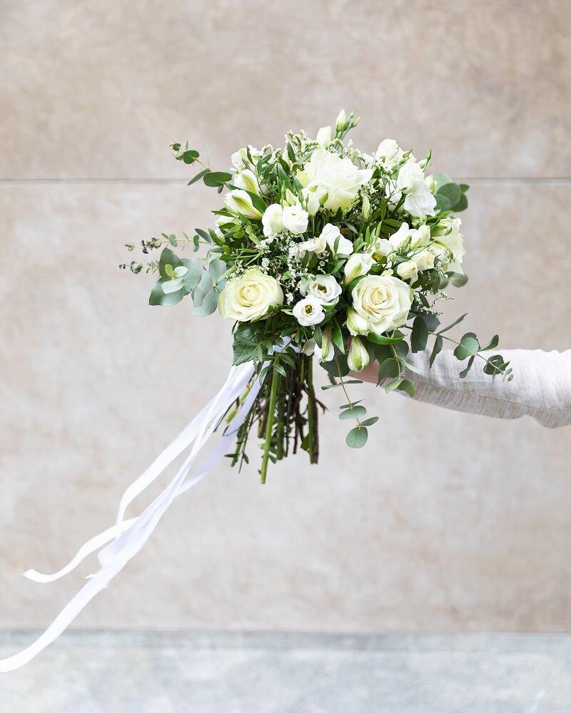 astromelia blanca