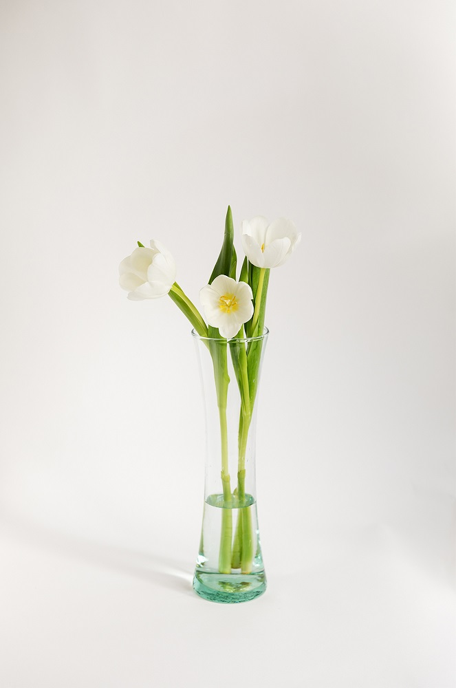 ramo-de-tulipanes