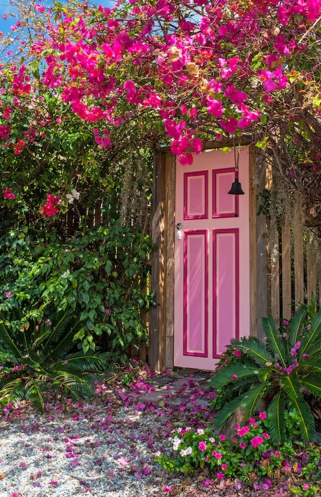 buganvilla puerta