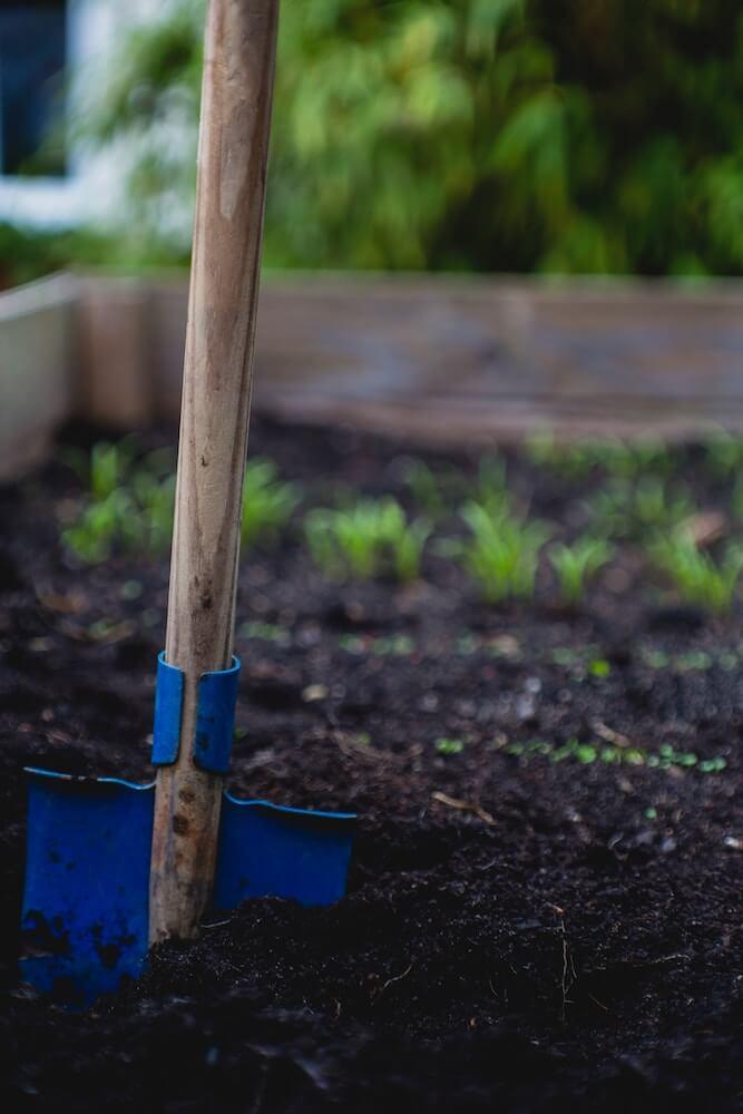 Jardinería y otoño