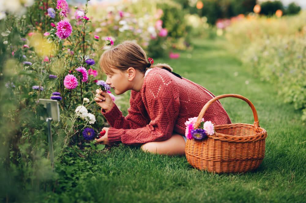 ¿Cómo recolectar flores?