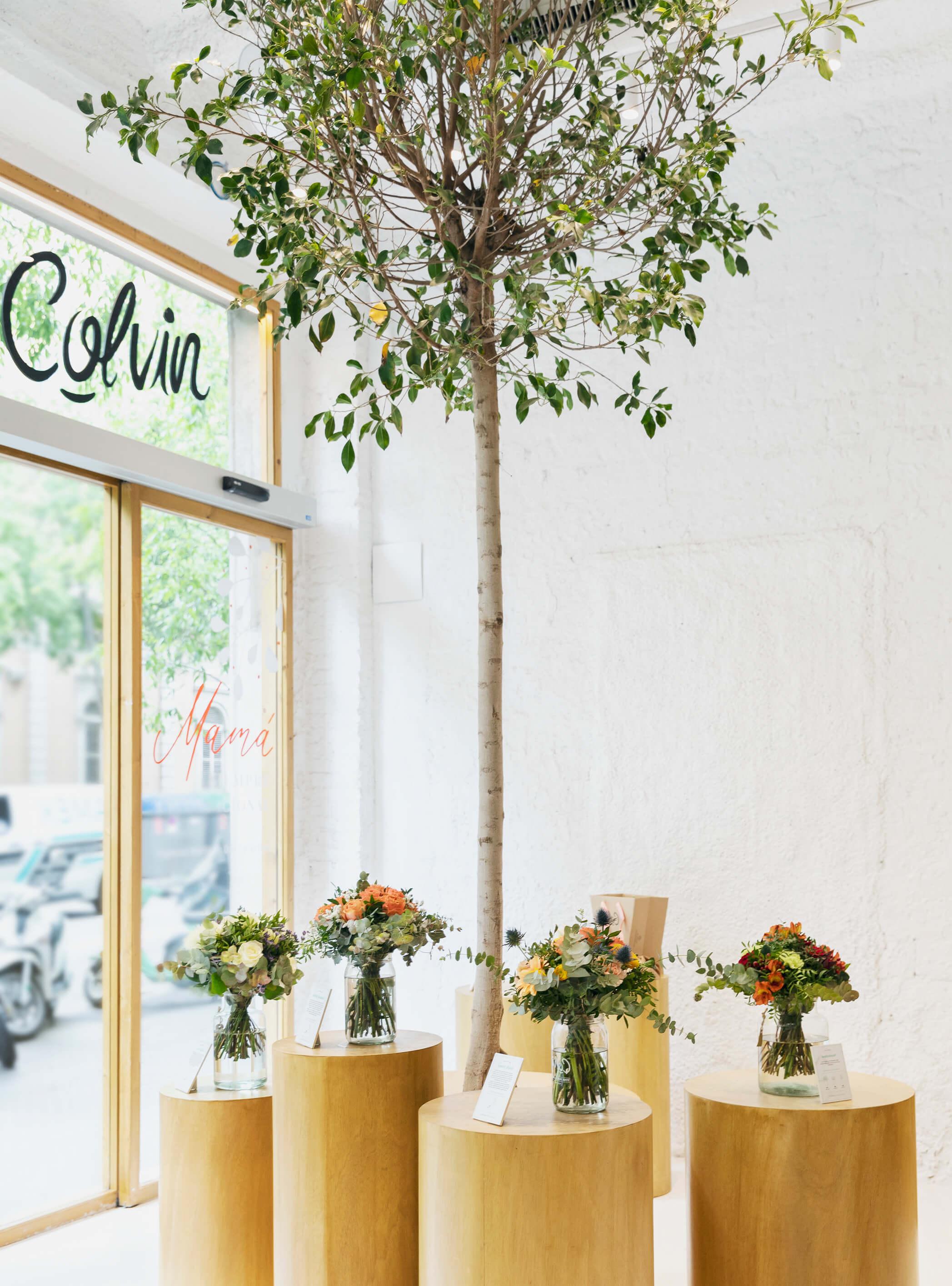 tienda colvin barcelona