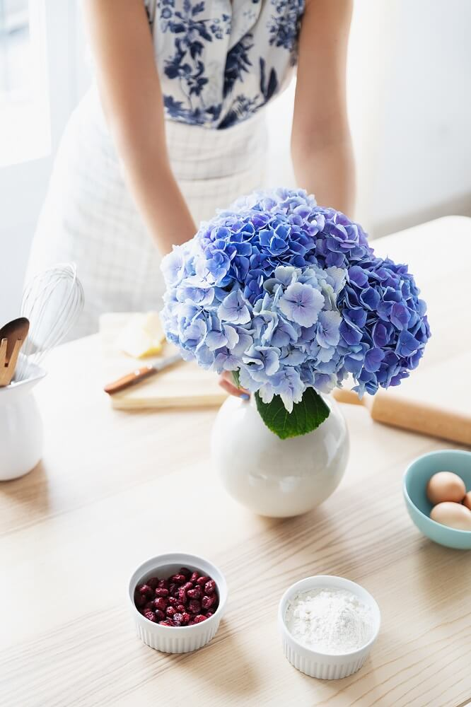 hortensias azules jarrón