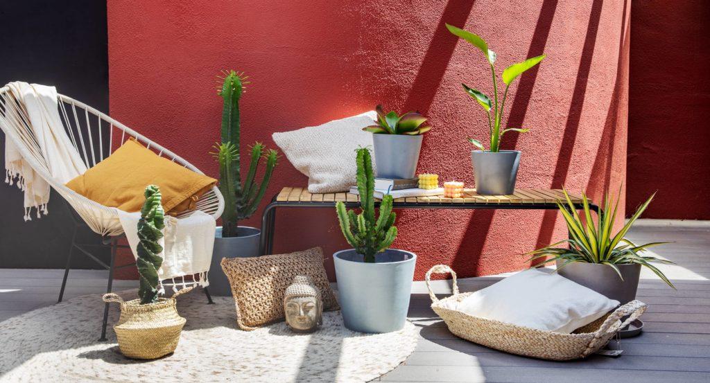 ¿Cómo regar las plantas en vacaciones? Los trucos que necesitas