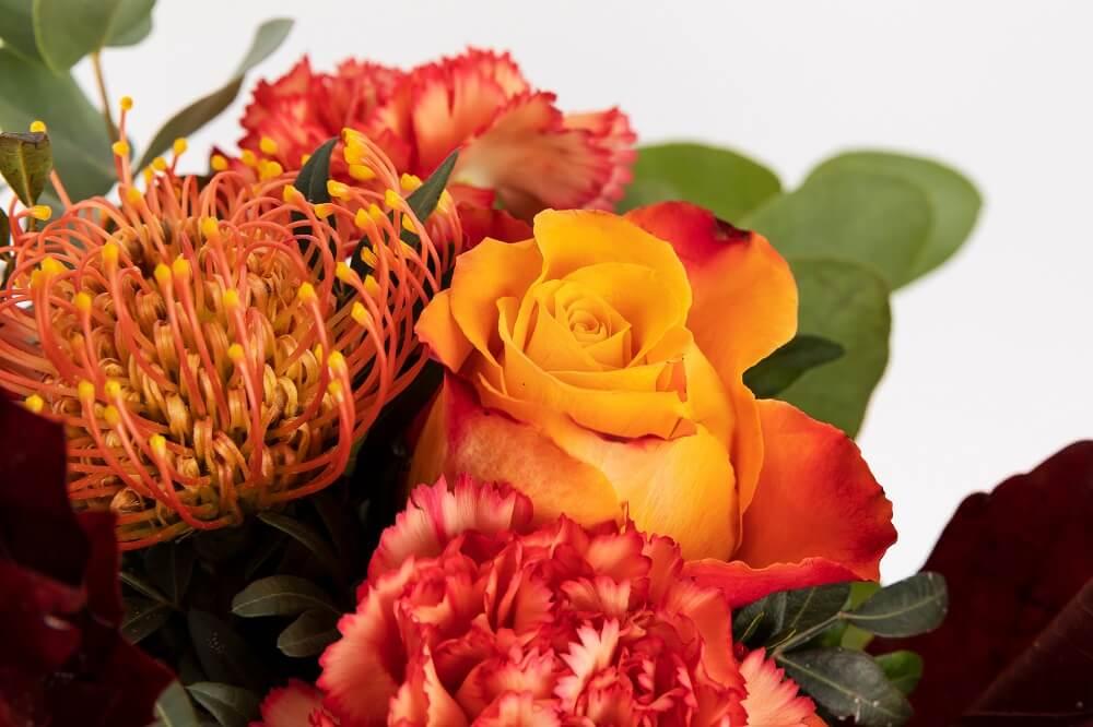 detalle flor uchuva
