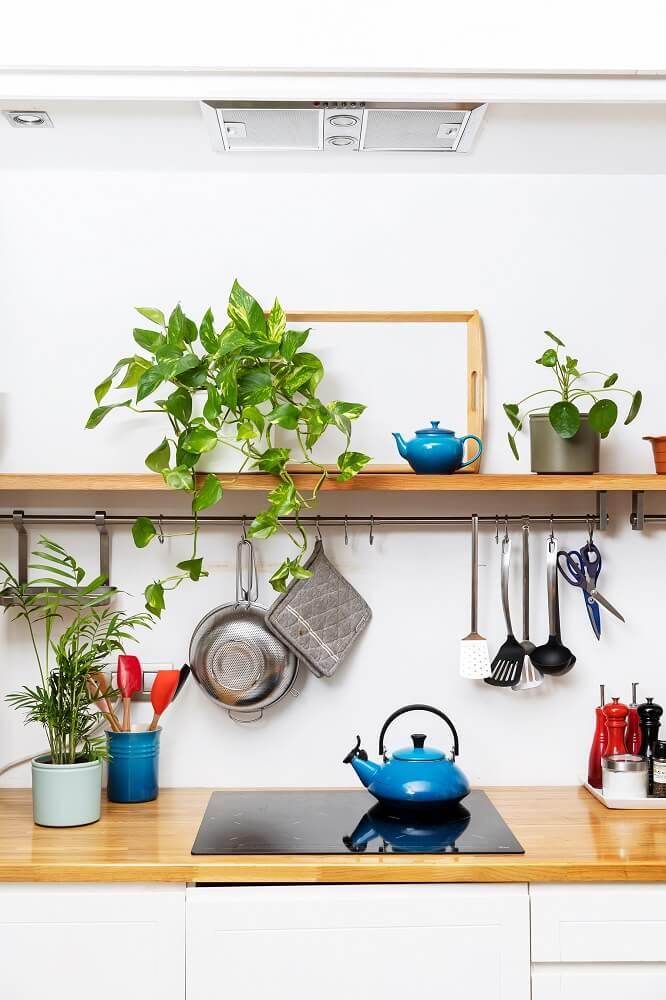 plantas en casa cocina
