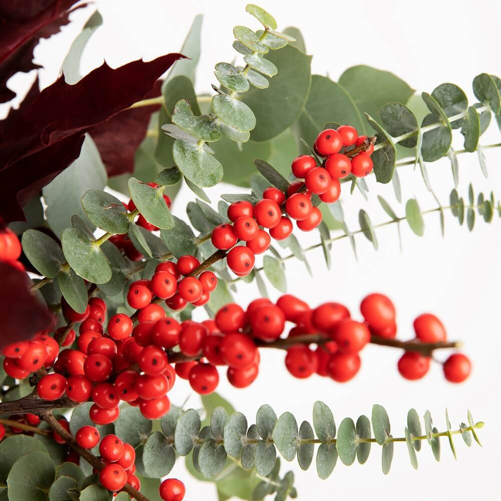 Foliage – Tendencias que enamoran