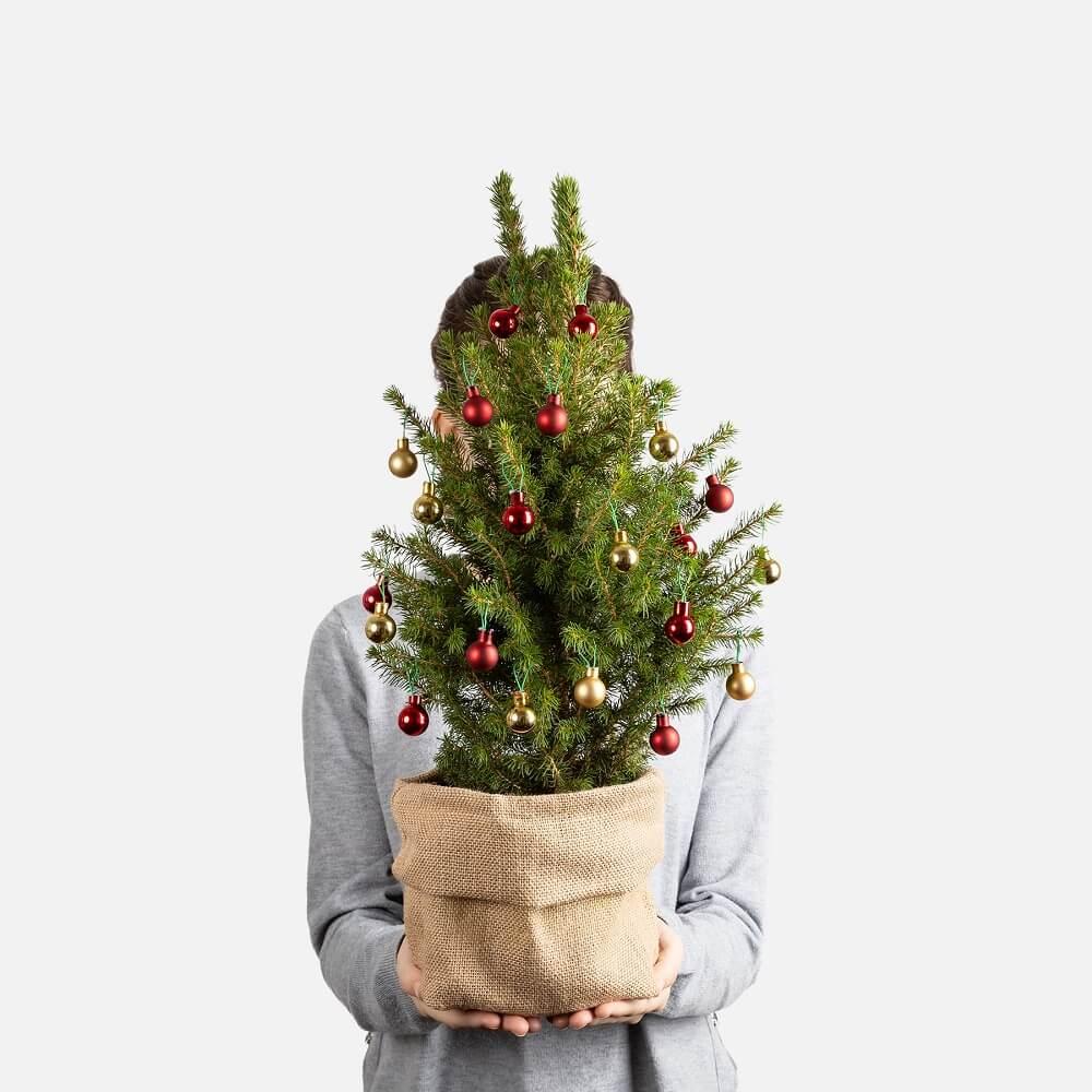 adornos navideños abeto