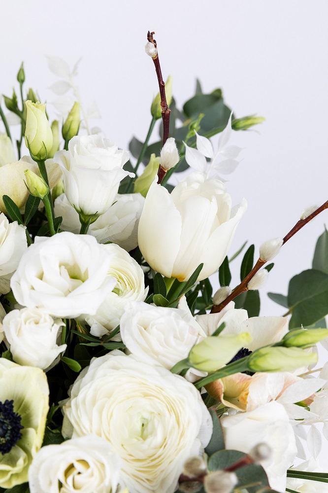 flores y salix