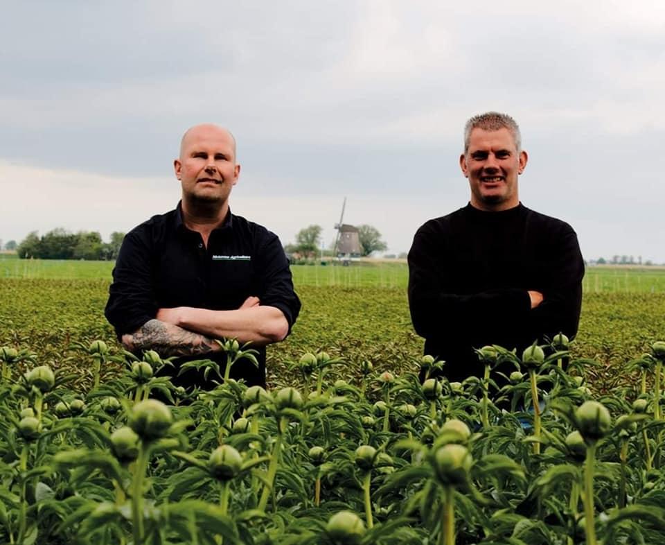 Conoce a los agricultores detrás de las peonías
