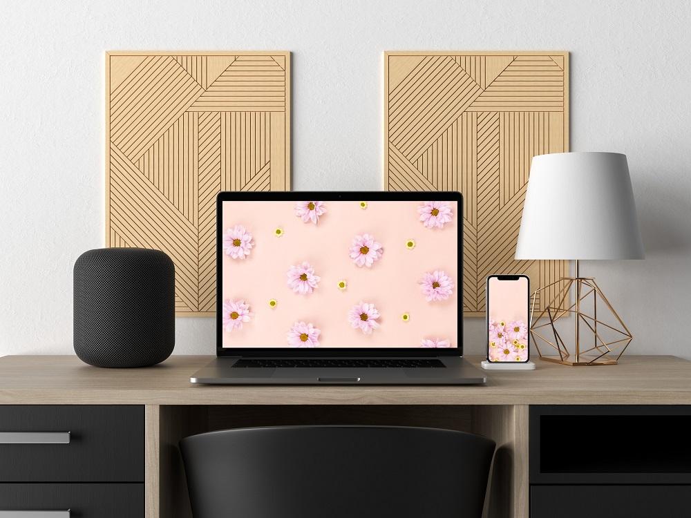 Descárgate los fondos de pantalla de las flores del verano