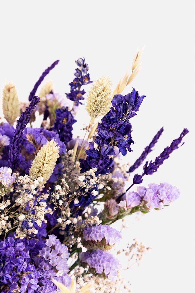 Dad la bienvenida a la nueva Colección de Flor Seca