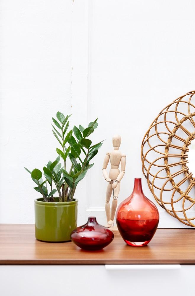 trabajar con plantas bonitas