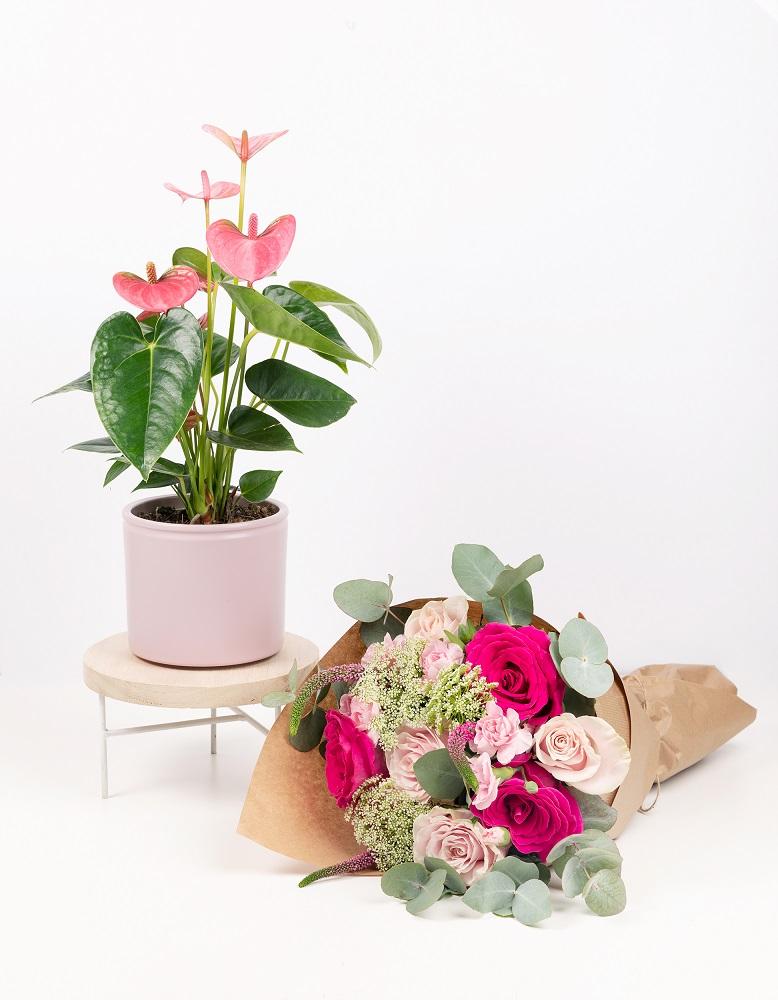 cáncer de mama ramo y planta
