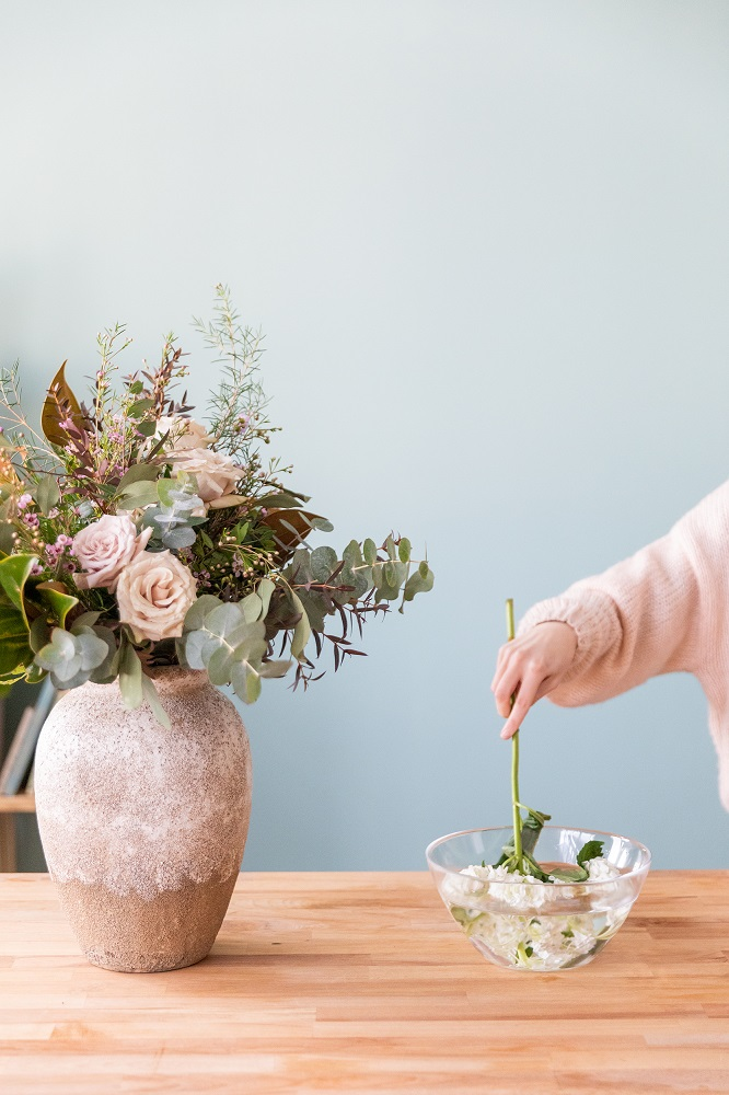 hidratar hortensias 3