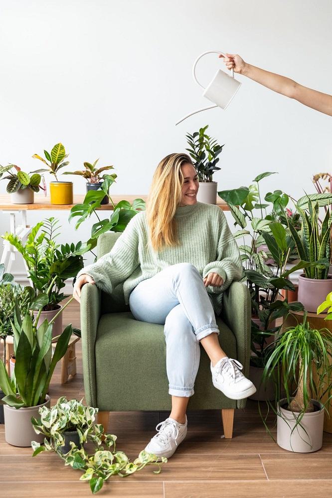 Tips para cuidar las plantas en invierno