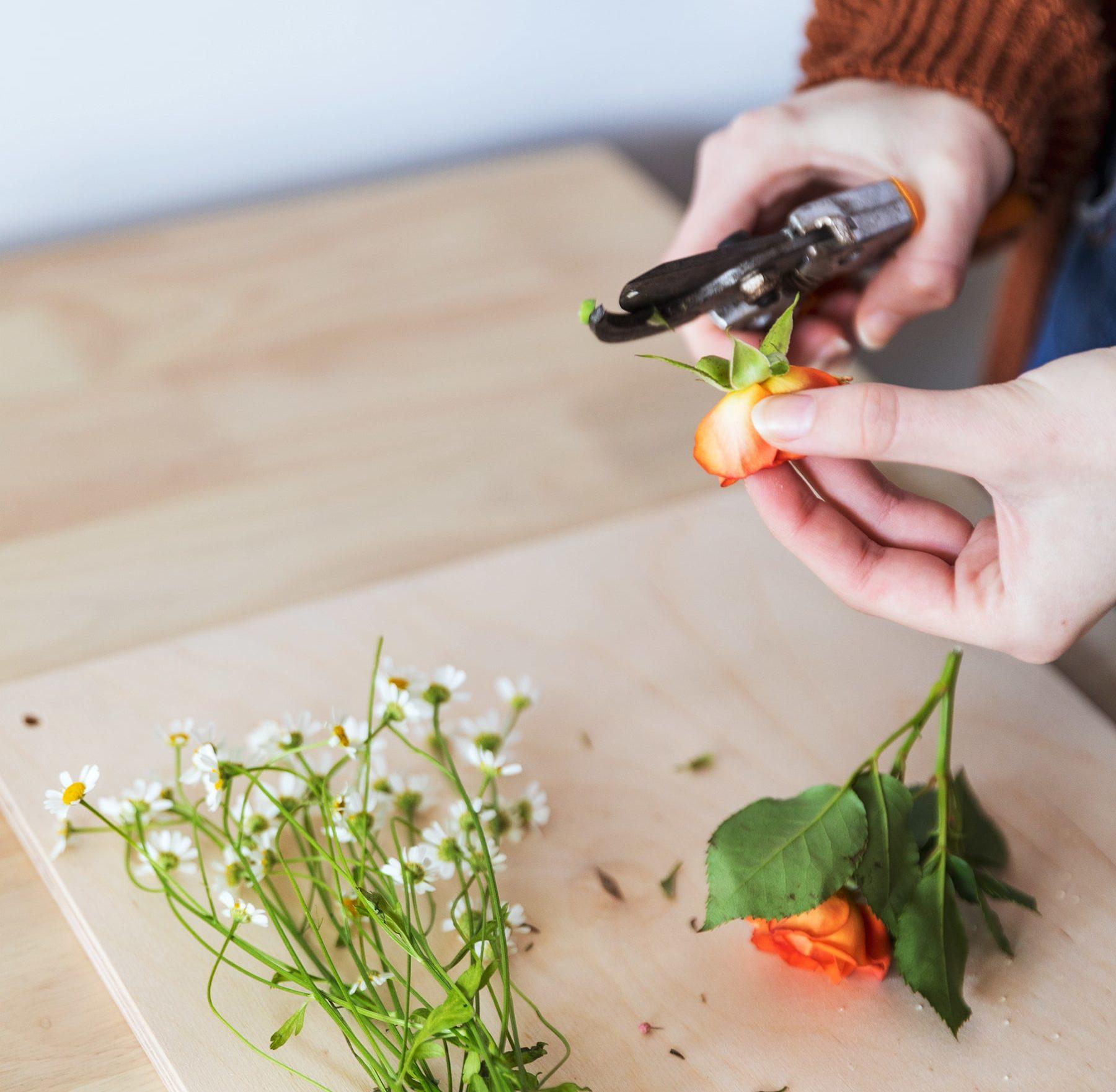 como prensar flores