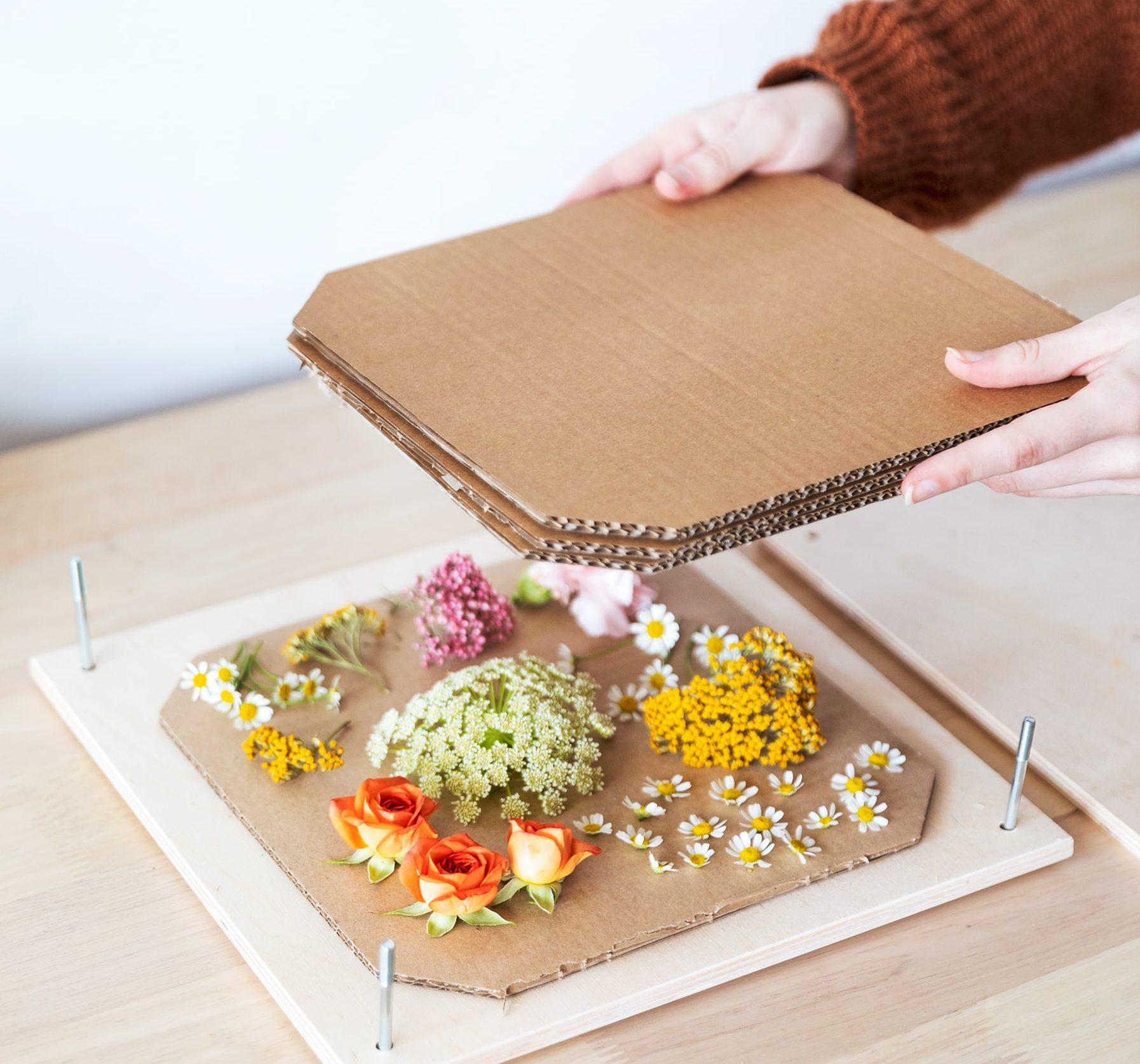 prensar flores facilmente