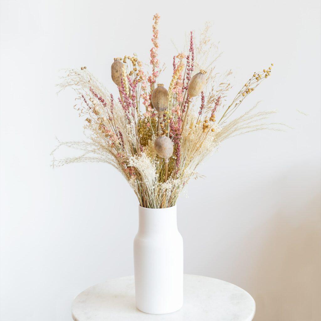 colección de flores secas