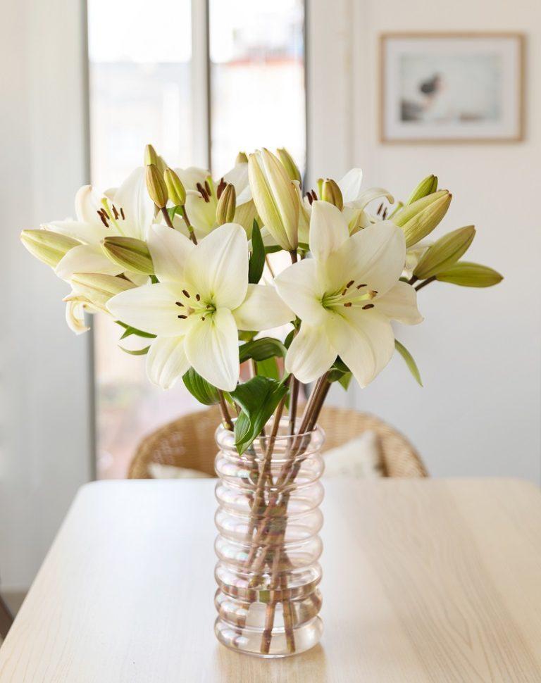 flores para un hombre