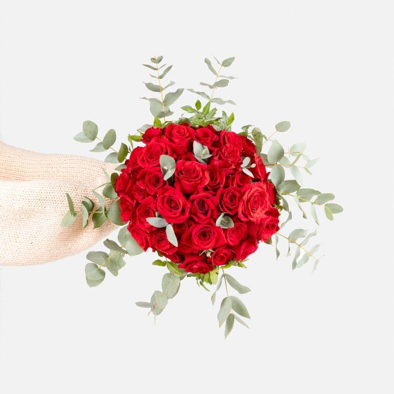 flores de amor - rosas rojas