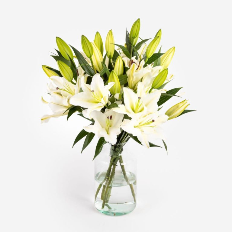 ramo de flores blancas pacific ocean