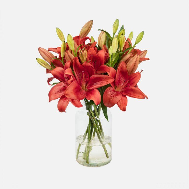 ramo de flores lirios rojos