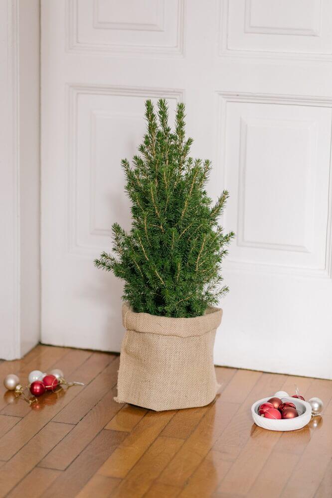 decorazioni natalizie mini abete