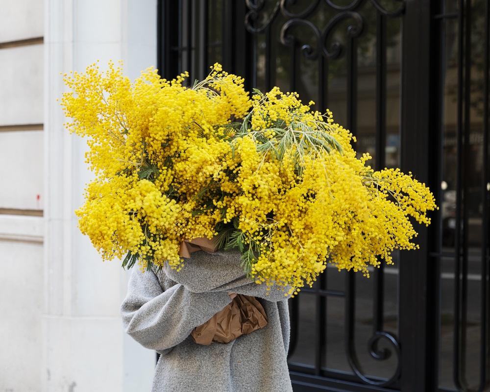 Fiori Gialli 4 Immagini Una Parola.Il Fiore Delle Donne La Mimosa Blog Di Fiori E Notizie Fresche