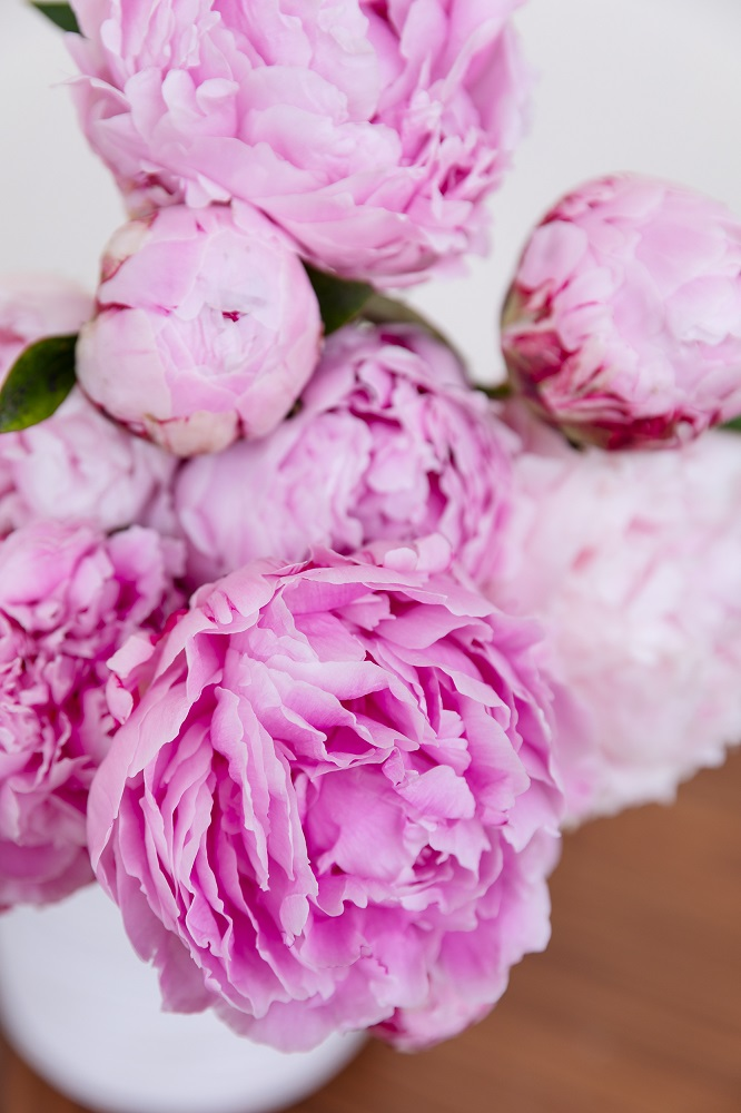 Sono arrivati i bouquet di peonie!