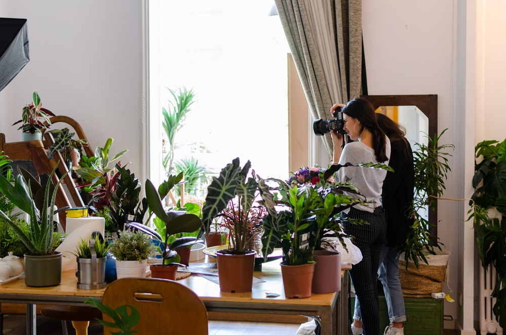 piante che vanno di moda 1
