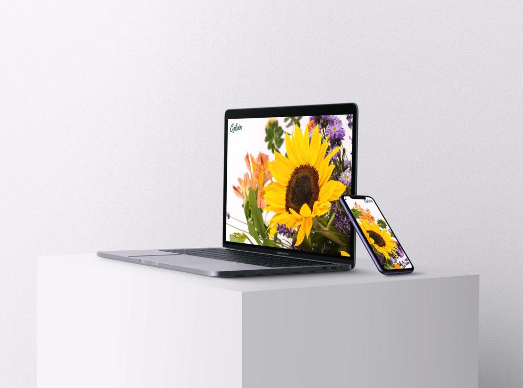 Nuovi sfondi di girasoli per il tuo desktop