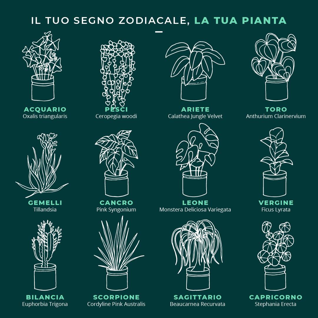 piante secondo il tuo segno