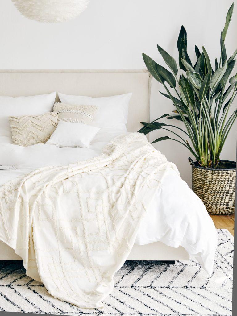 arredare camera da letto piante