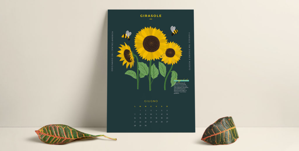 Eccolo appena sfornato! Il calendario di giugno è pronto per rallegrare le tue giornate estive