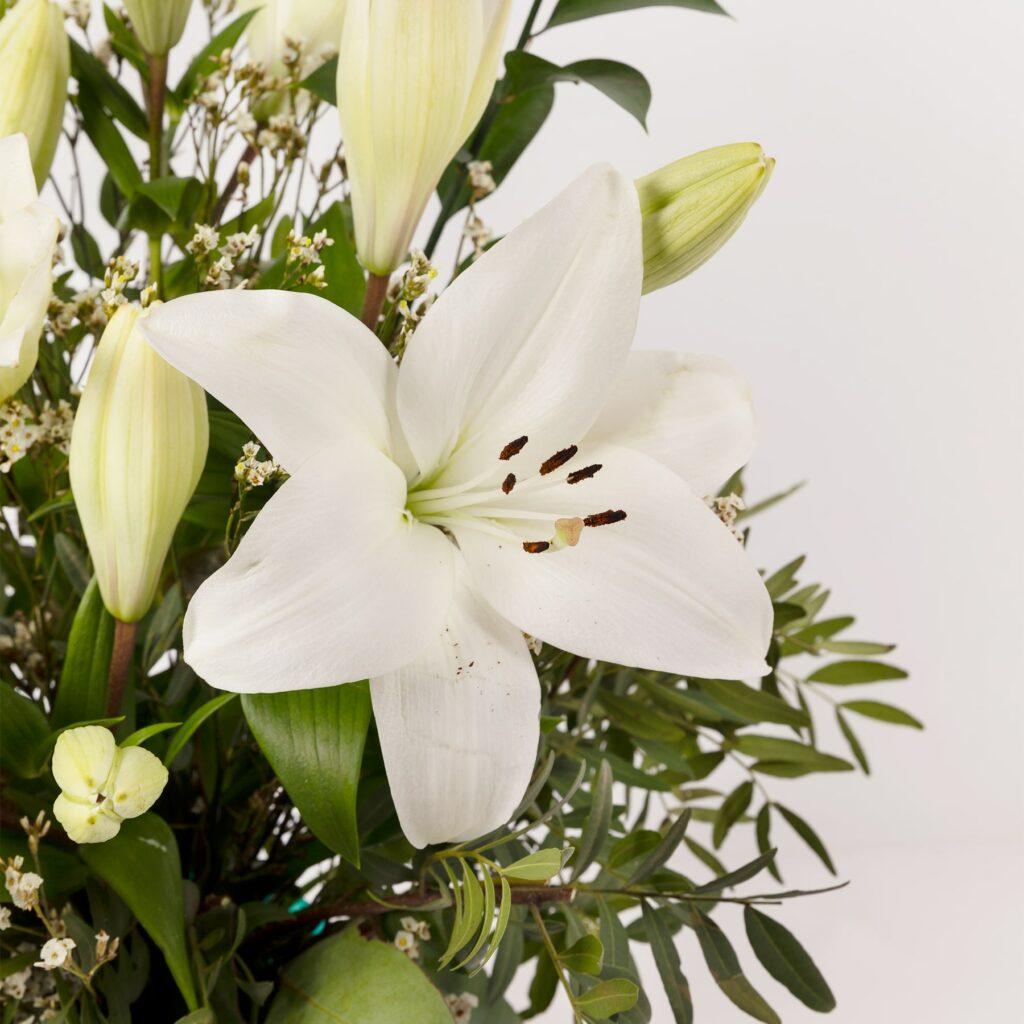 Sapresti identificare le parti principali di un fiore? Mettiti alla prova