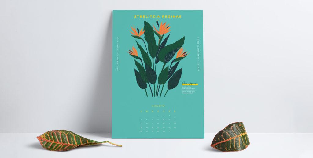 L'estate è qui, così come il nostro calendario di Luglio!