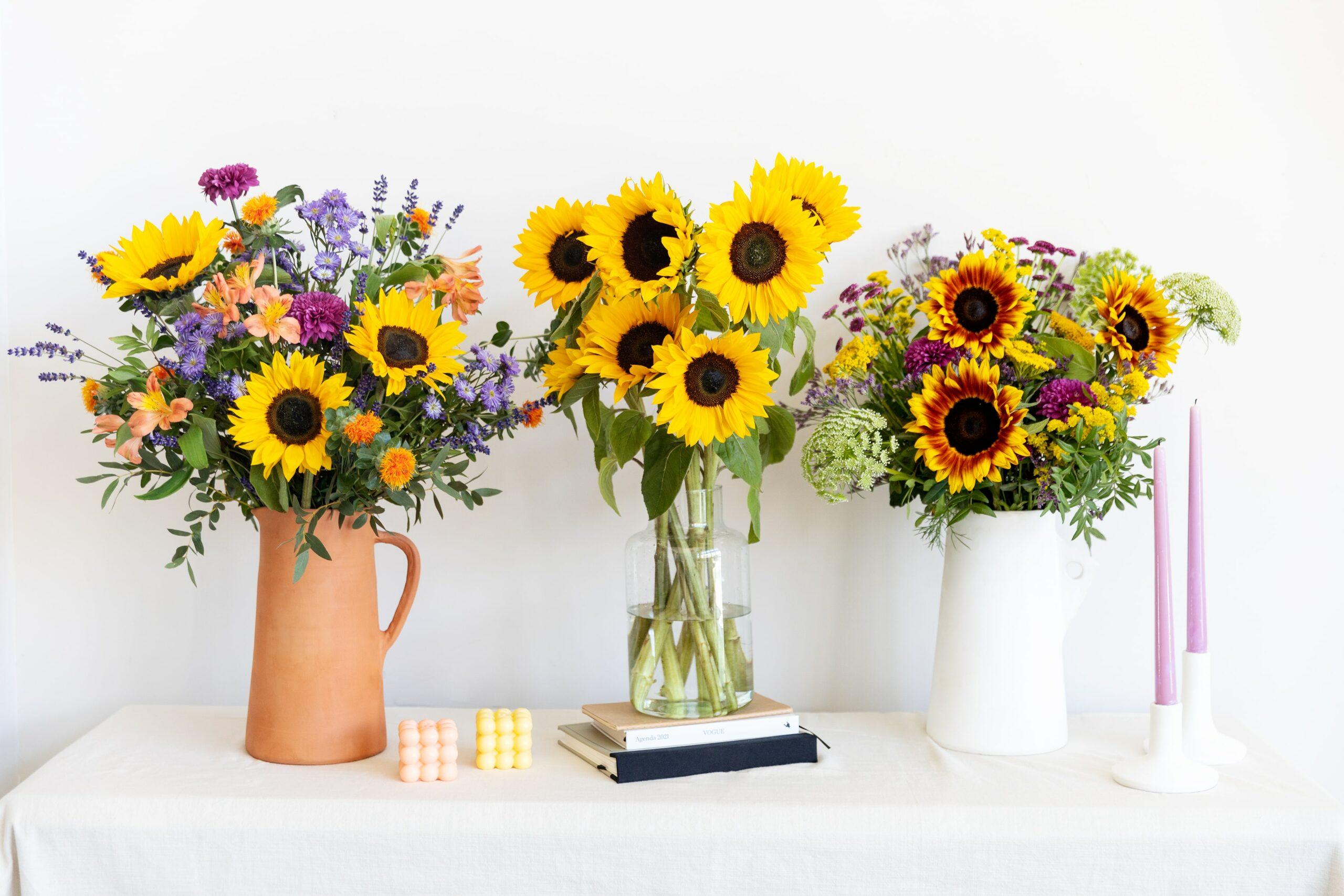 fiore girasole
