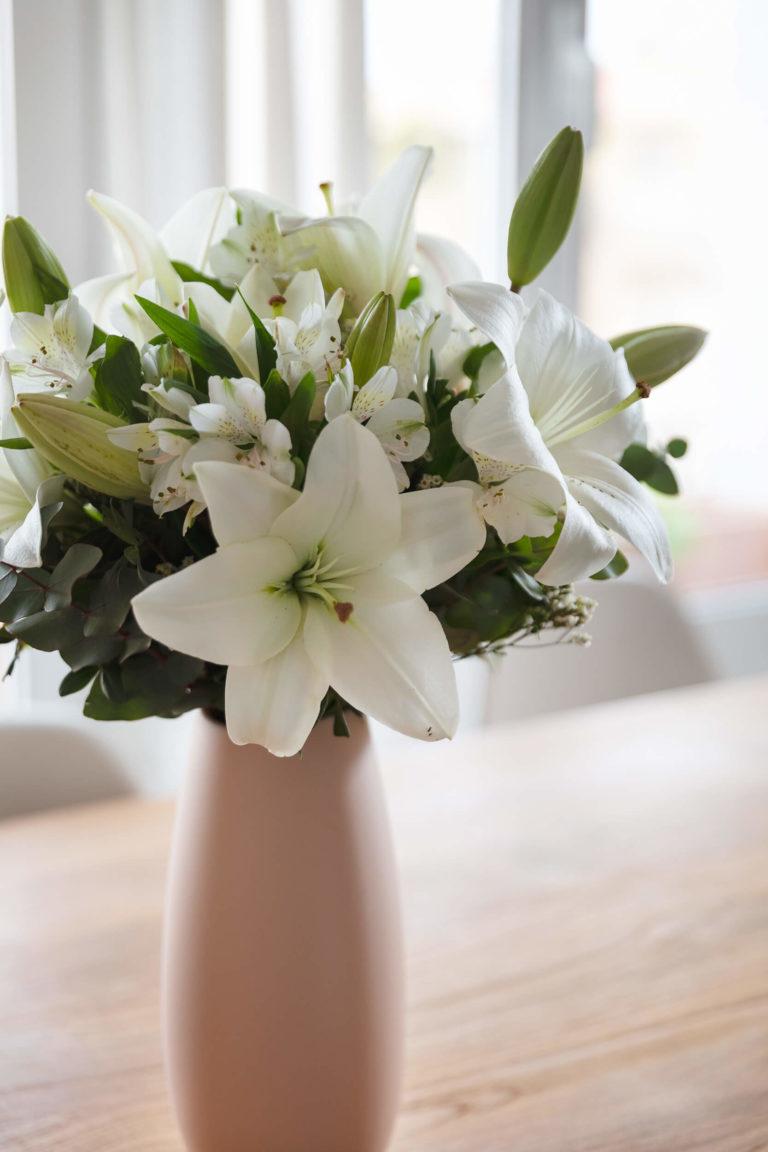 Fiori bianchi in vaso