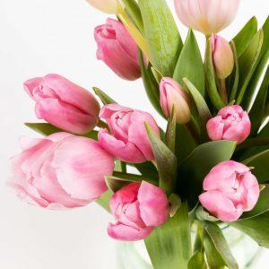 Bouquet di tulipani di colore rosa