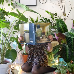 plantas de interior grandes