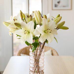 Flores brancas numa floreira para homem