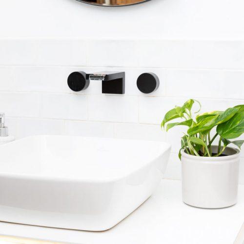plantas para casa de banho